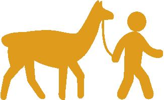 Tiergestützte Aktivitäten