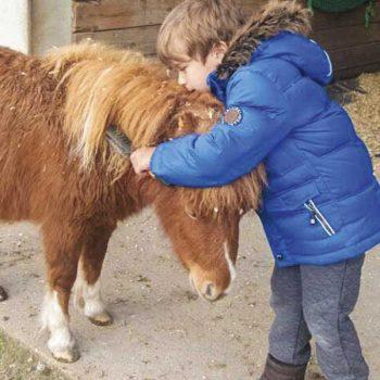behinderter Junge kämmt Pferdemähne