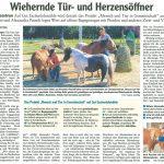 Pressebericht Buchloe