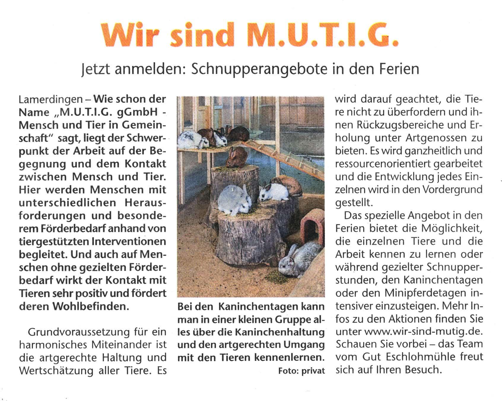 Ferien Schnupperangebot Gut Eschenlohmühle